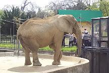 Omoriyama Zoo, Akita, Japan