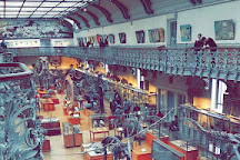 Galeries de Paleontologie et d'Anatomie comparee, Paris, France