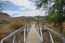 Rio Grande Village Nature Trail, Big Bend National Park, United States