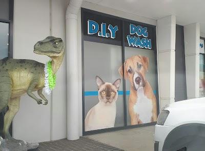 Macarthur Pets & The Reptile Shop