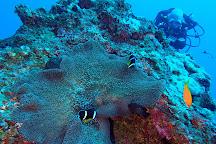 Scubananas Reunion Plongee, Saint-Leu, Reunion Island