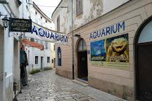 Porec Aquarium, Porec, Croatia