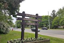 Brueckner Rhododendron Gardens, Mississauga, Canada