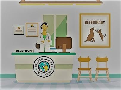 dental specialist veterinary