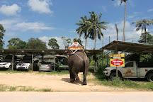 Funny Day Safari, Bophut, Thailand
