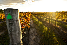 Summit Estate Wines, Thulimbah, Australia