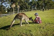 Paradise Country, Oxenford, Australia