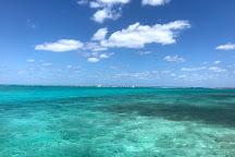 George's Watersports, Grand Cayman, Cayman Islands