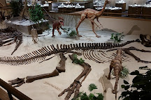 Dakota Dinosaur Museum, Dickinson, United States