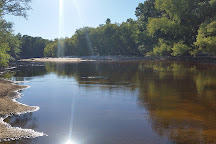 Apalachicola National Forest, Tallahassee, United States