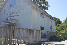 Whiskey Run Creek, Brownville, United States