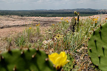 Enchanted Rock State Natural Area, Fredericksburg, United States
