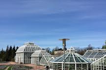 Kaisaniemi Botanic Garden, Helsinki, Finland