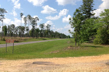 Little River State Forest, Atmore, United States