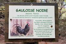 Aoubre L'aventure Nature, Flassans-sur-Issole, France