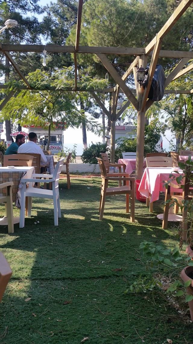 Talya Cafe