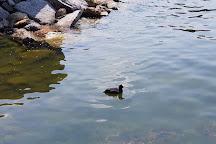 Lago di Viverone, Viverone, Italy