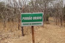 Rural Auta Pinheiro Bezerra Museum, Santa Cruz, Brazil