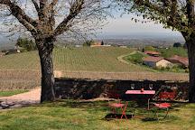 Domaine Serol, Renaison, France