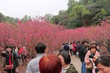 Baishuidai Park, Jiangmen, China