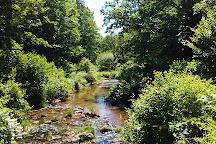 Tuscarora State Park, Barnesville, United States