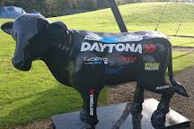 Daytona Milton Keynes, Milton Keynes, United Kingdom