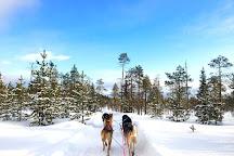 BearhillHusky, Rovaniemi, Finland