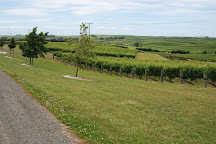 Yealands Estate Winery, Seddon, New Zealand