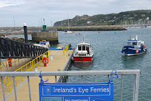 Ireland's Eye, Howth, Ireland