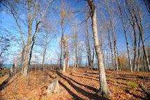 Highland Glen Conservation Area, Brights Grove, Canada