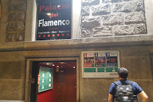 Palacio del Flamenco, Barcelona, Spain
