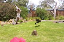 Healesville Sanctuary, Healesville, Australia