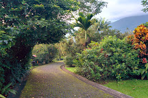 Arenal Natura Ecological Park, La Fortuna de San Carlos, Costa Rica