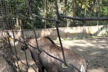 Bethuadahari Wildlife Sanctuary, West Bengal, India
