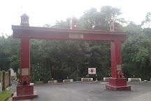 Simsa Mata Temple Daroh, Kangra, India