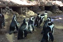 Amersfoort Zoo, Amersfoort, The Netherlands