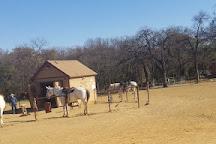 Marshall Creek Ranch, Southlake, United States