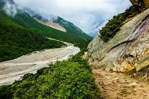 Gangotri National Park, Uttarkashi, India