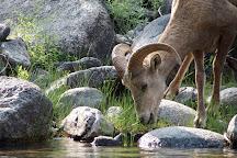 Salmon River, Idaho, United States