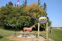 Lionels Farm, Whitchurch-Stouffville, Canada