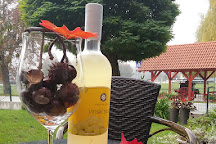 Puklavec Family Wines, Ormož, Slovenia