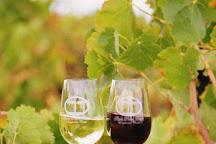 Angas Plains Wines, Langhorne Creek, Australia