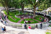 Longchamp Racecourse, Paris, France