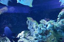Aquarium Wasserbillig, Wasserbillig, Luxembourg