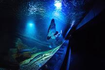 Oceanarium Miedzyzdroje, Miedzyzdroje, Poland