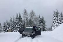 Packwood Lake Trail, Packwood, United States