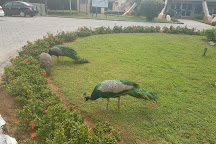 Lekki Conservation Centre, Lagos, Nigeria