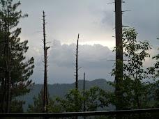 Pine Track nathia-gali