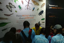Siam Insect Zoo, Mae Rim, Thailand