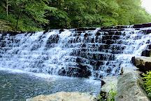 Laurel Hill State Park, Somerset, United States